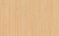 25037-141-canadian-maple-medium