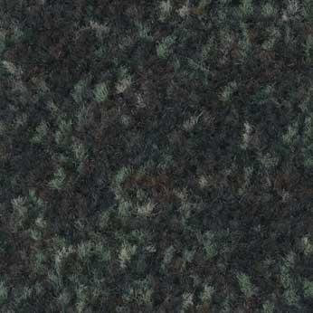 coral-brush-activ-forest-5808