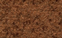 coral-brush-activ-beach-brown-5884