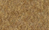 coral-brush-activ-coir-5824
