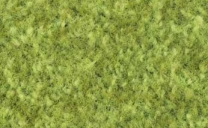 coral-brush-activ-lime-5828