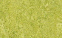 Forbo Marmoleum Real - chartreuse-3224