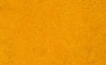 Forbo Marmoleum Real - golden-sunset-3125
