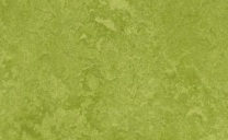 Forbo Marmoleum Real - green-3247