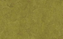 Forbo Marmoleum Real - olive-green-3239