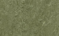 Forbo Marmoleum Real - pine-forest-3255