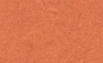 Forbo Marmoleum Real - stucco-rosso-3243