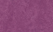 Forbo Marmoleum Real - summer-pudding-3245