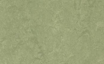 Forbo Marmoleum Real - willow-3240